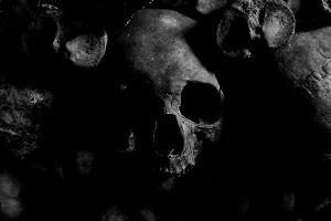 All the Pretty Bones